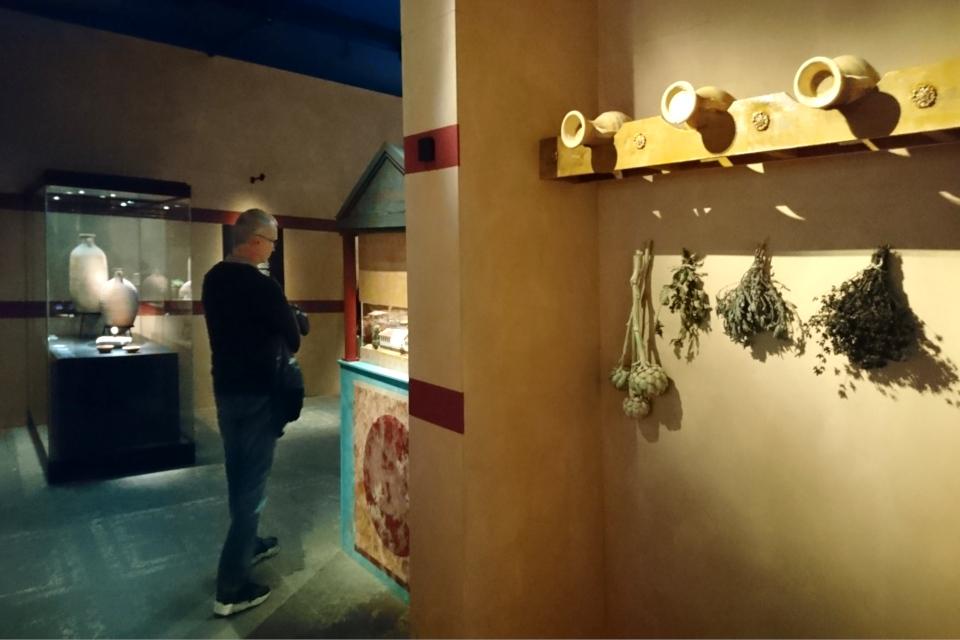 Жизнь городов Помпеи и Геркуланума до катастрофы