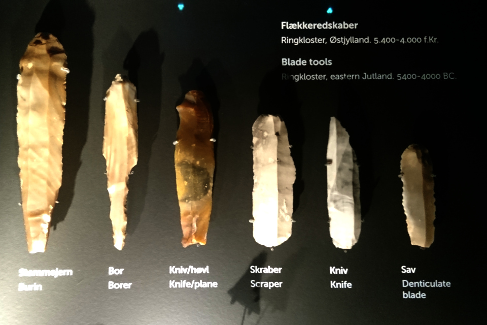 Различные орудия труда из камня культуры Эртебёлле