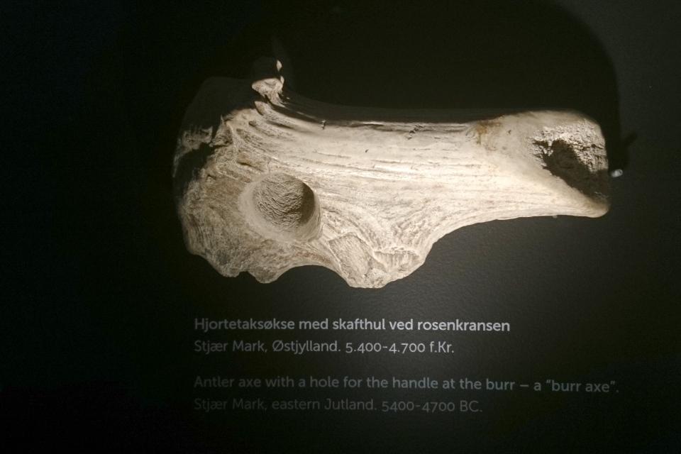 Молоток из рога оленя с просверленной дыркой, 5400-4700 г. до н. э., Эртебёлле