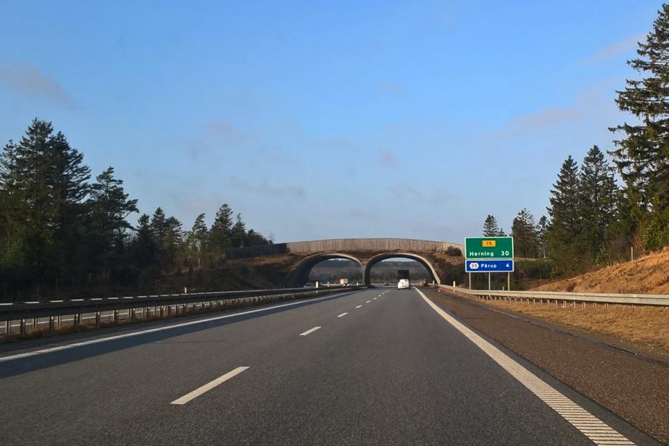 Экодук - мост для животных проложен через автотрассу, Хернинг / Herning, Дания