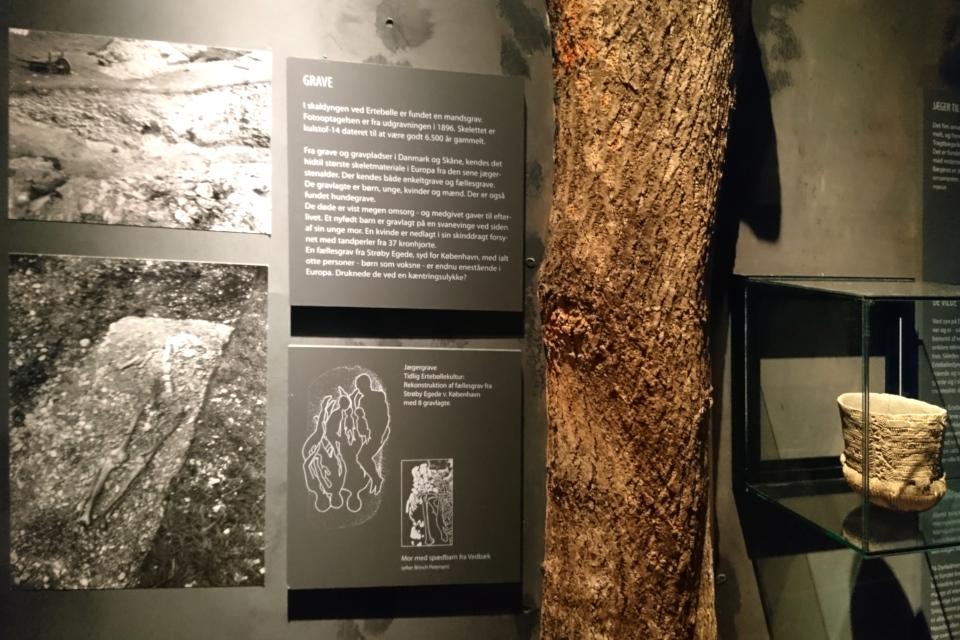 Фотография могилы и схема. Фото 14 окт. 2019, музей каменного века Эртебёлле