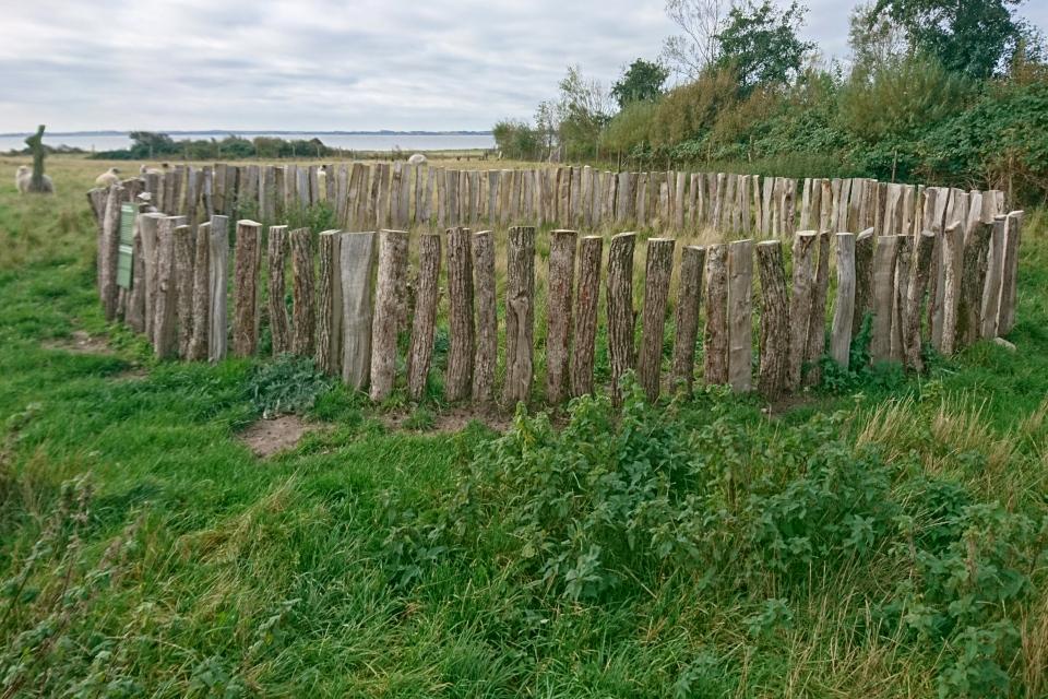 Деревянный частокол, который устанавливался вокруг захоронений
