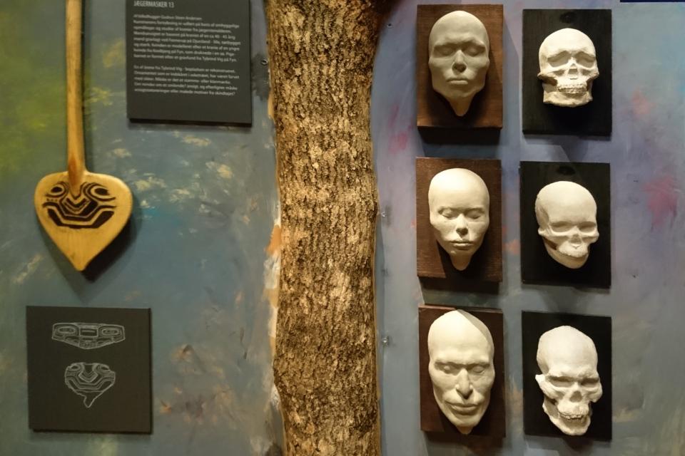 Восстановленные по скелетам головы и лица людей культуры Эртебёлле.