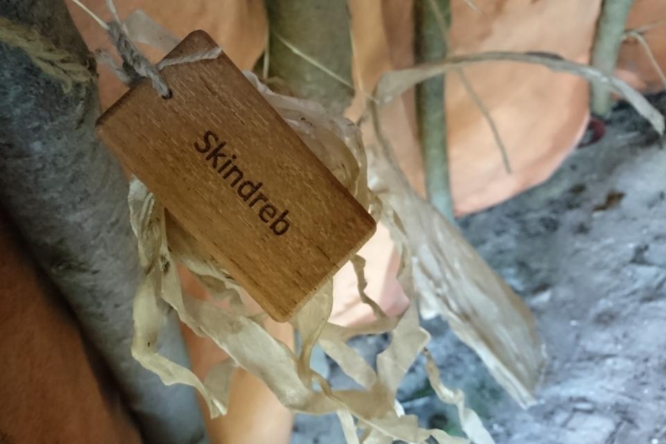 Веревки из кожи. Парк каменного века Эртебёлле, Дания