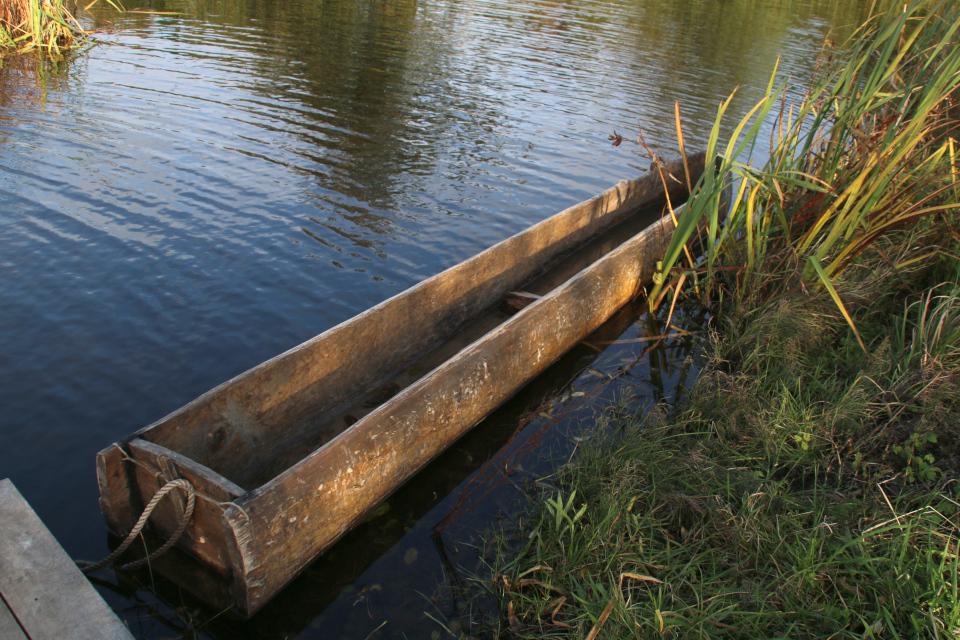 Лодка из ствола липы (дат. Stammebåd) по технологии культуры Эртебёлле
