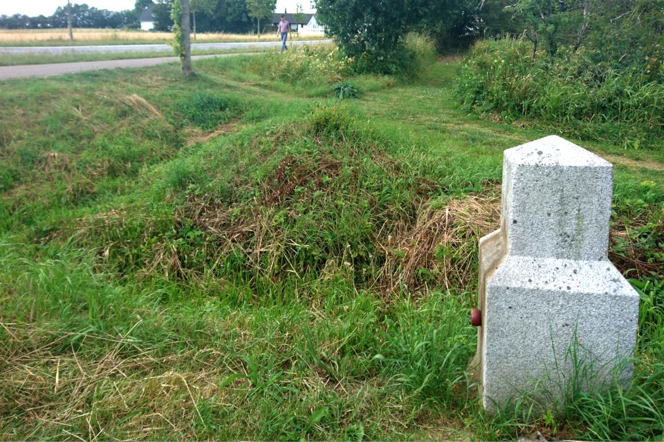 Вид на дорогу с липовой аллеей на месте бывшей границы