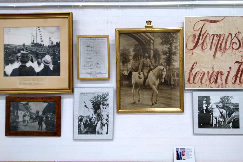 Фотографии с королем Кристиан Х во время празднования воссоединения