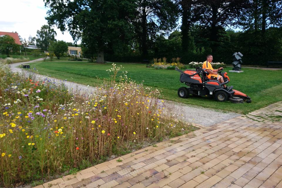 Садовник на газонокосилке в парке Genforeningspladsen
