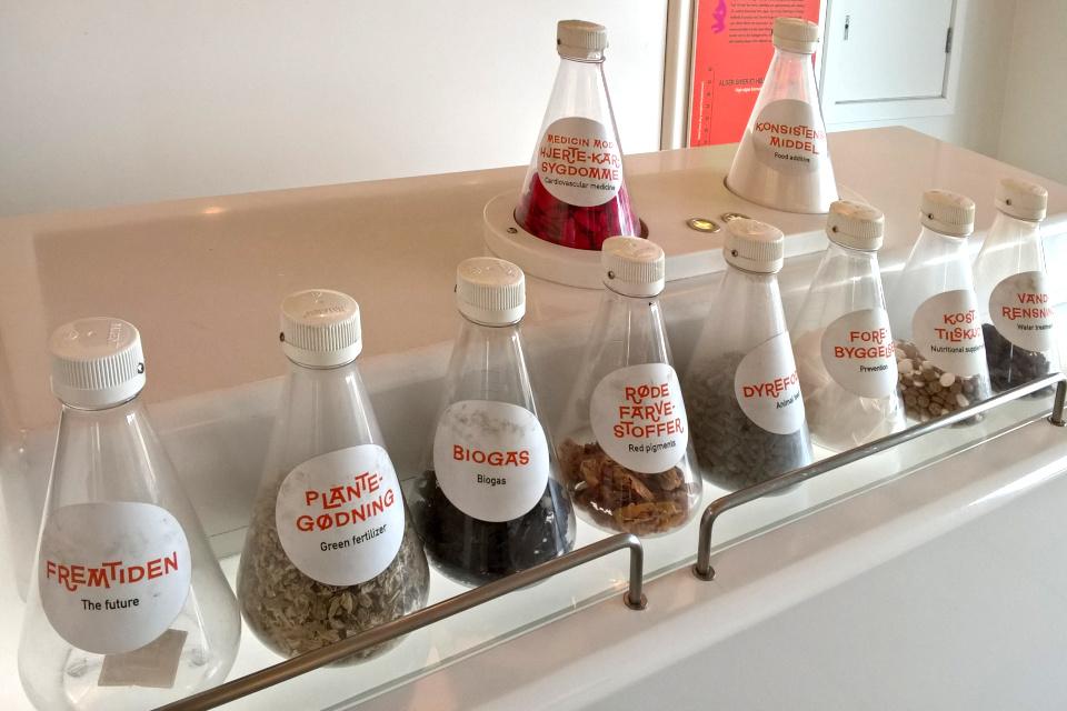 Лабораторные колбы с надписью про примеры применения водорослей.