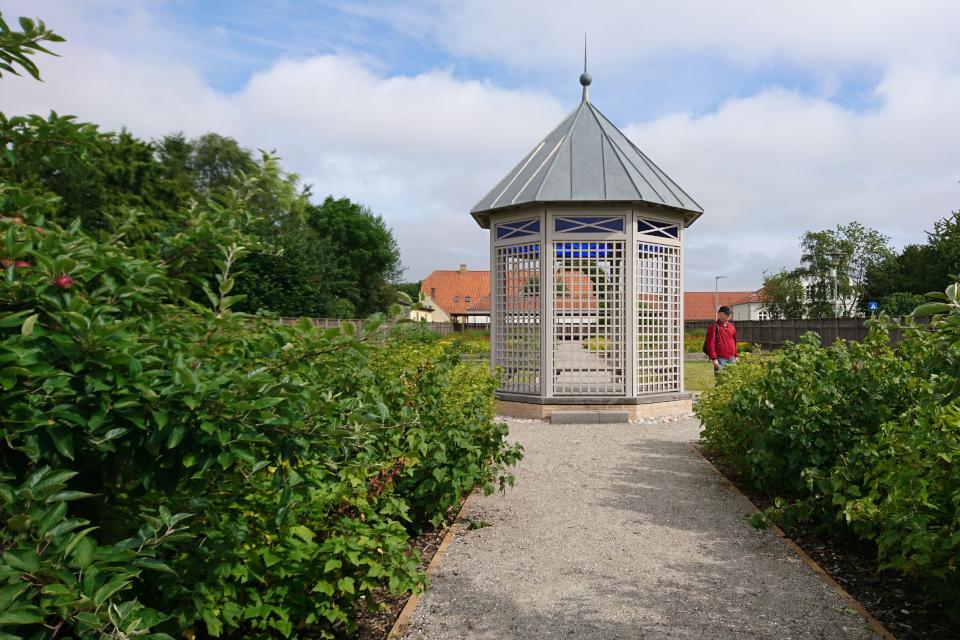 Яблони в саду Коменского, г. Кристиансфельд, Дания