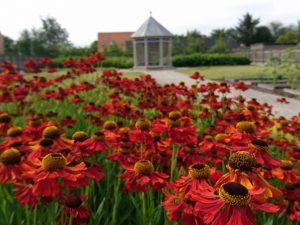 Сад Коменского в Кристиансфельд