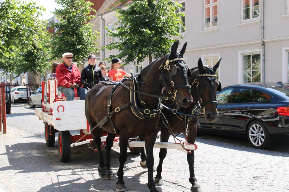 Прогулка по городу в повозке с лошадьми г. Кристиансфельд / Christiansfeld, Дания