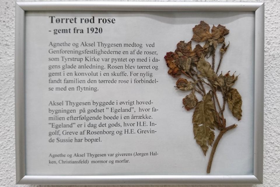 Сухие розы, которые украшали церковь Тюструп