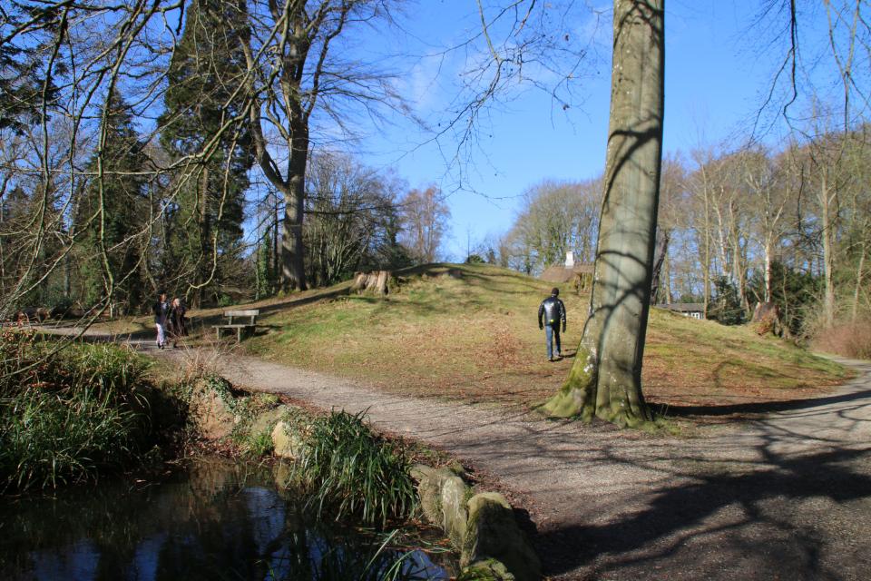 Курган в лесном ботаническом саду г. Орхус. Фото 11 мар. 2020