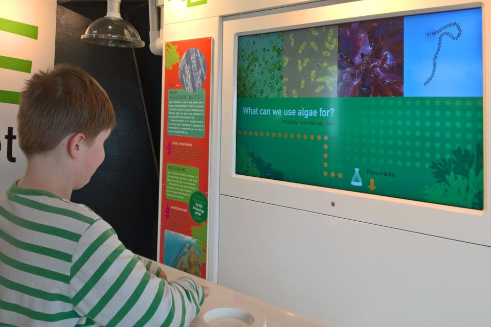Информация про исследования водорослей в игровой форме в океанариуме, Дания