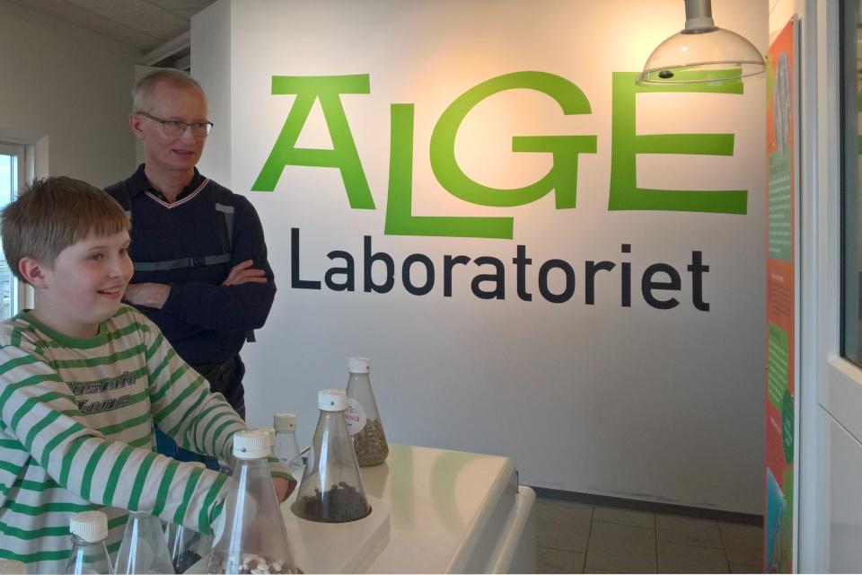 Информационный центр про водоросли в океанариуме Каттегат (Kattegat), Дания