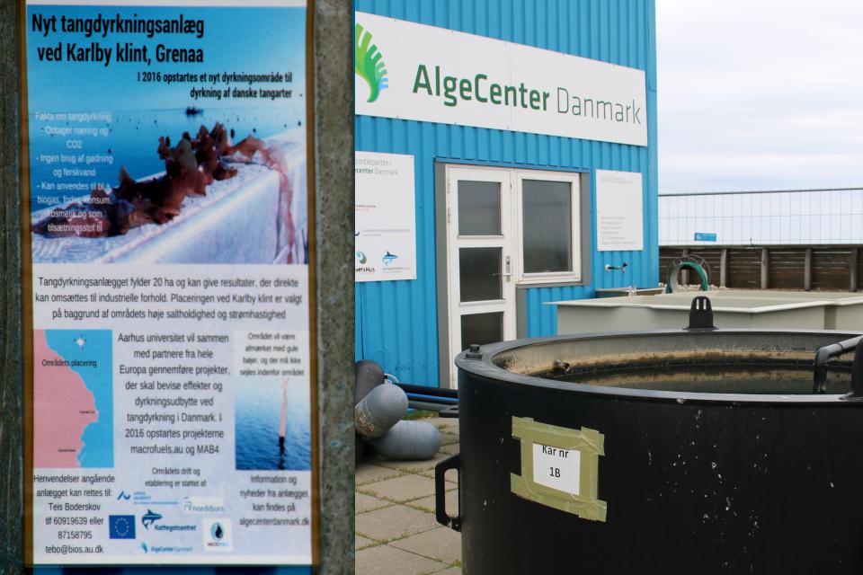 Информационный щит с кратким описанием проекта, осуществляемым AlgeCenter