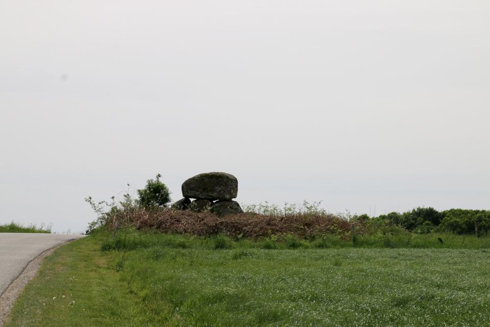 Дольмен Скйелдруп на холме возле дороги. Фото 21 мая 2008, г. Nødager, Дания