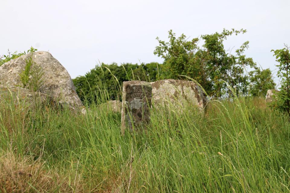 Каменный столбик возле кромлеха дольмена (Fredet Mindesmærke)