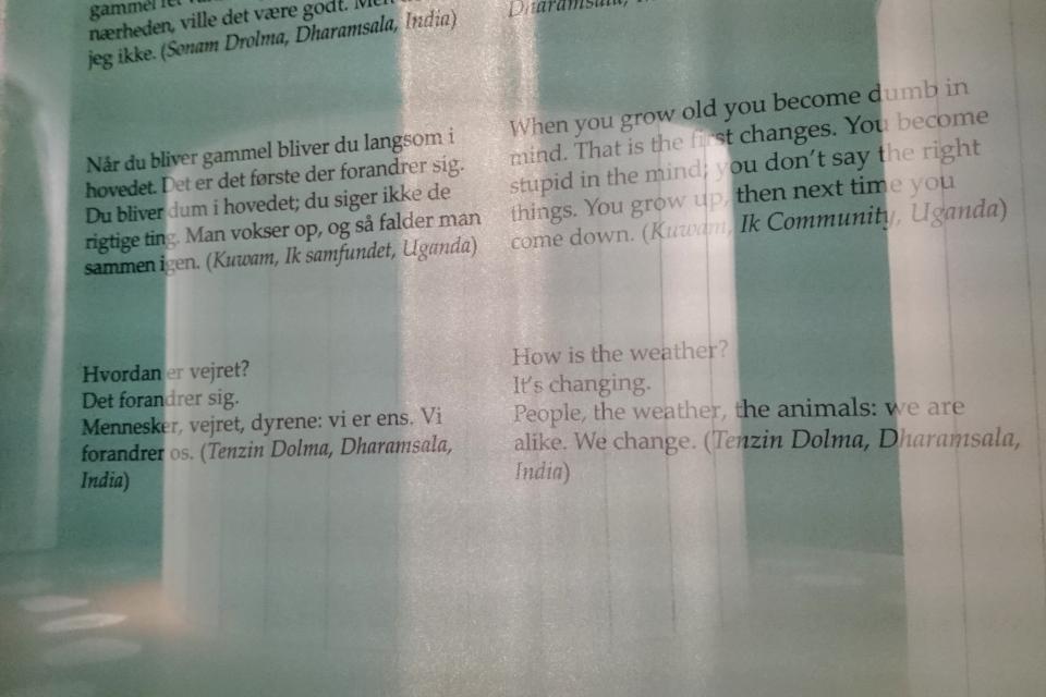 Когда я состарюсь - выставка в музее Мосгорд, Дания