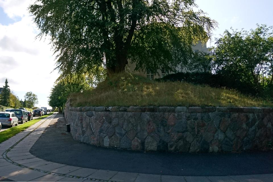 По другую сторону улицы Carl Nielsens Vej - возможно, остатки бывшего кургана