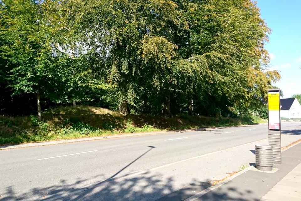 Курган возле дороги Carl Nielsens Vej, ведущей от королевского дворца