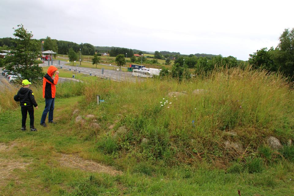 Возле кургана с дольменом, г. Скэруп / Skærup, Дания.