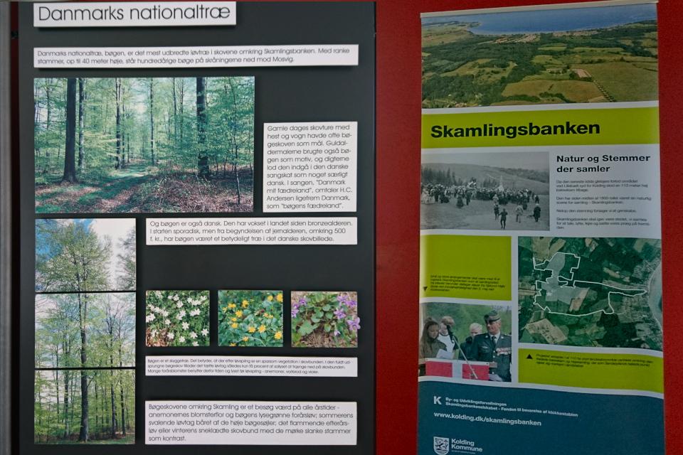 Экспозиция про природу в музее Скамлингсбанкен (Skamlingsbanken)