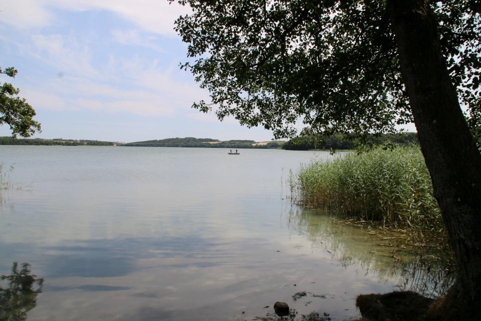 Вид на озеро Фуссинг с конечного места полуострова, Дания