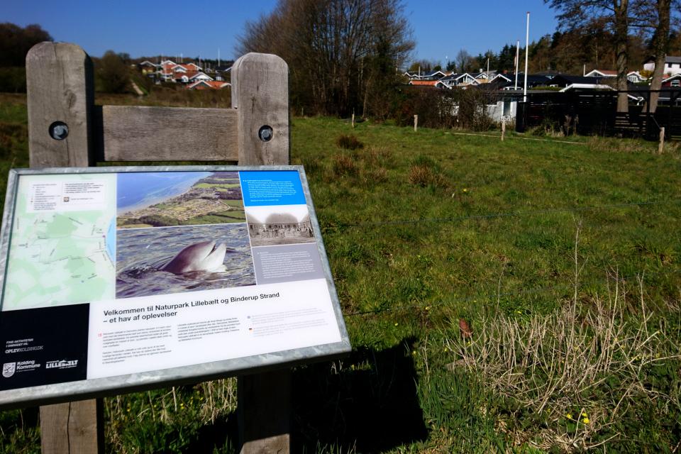 Табличка про морских свиней, Биндеруп странн (Binderup Strand), Дания