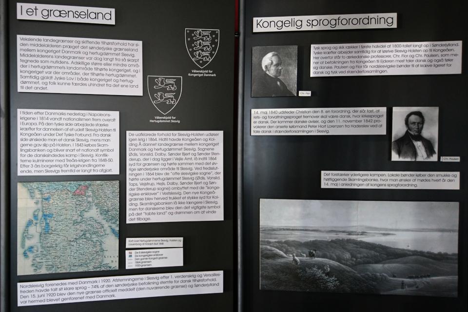 Выставка в музее Скамлингсбанкен (Skamlingsbanken)