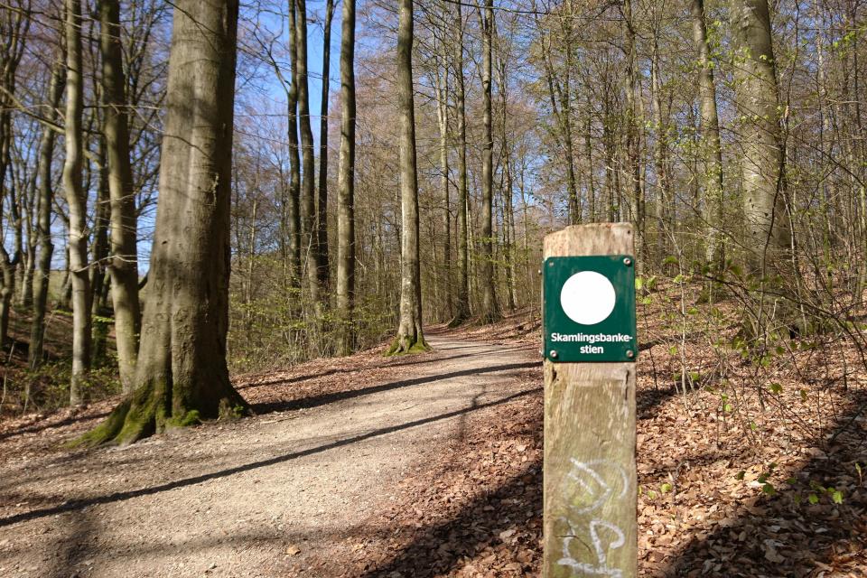 """Пешеходный маршрут """"Дорожка Скамлингсбанкен"""" (дат.""""Skamlingsbankenstien"""")"""