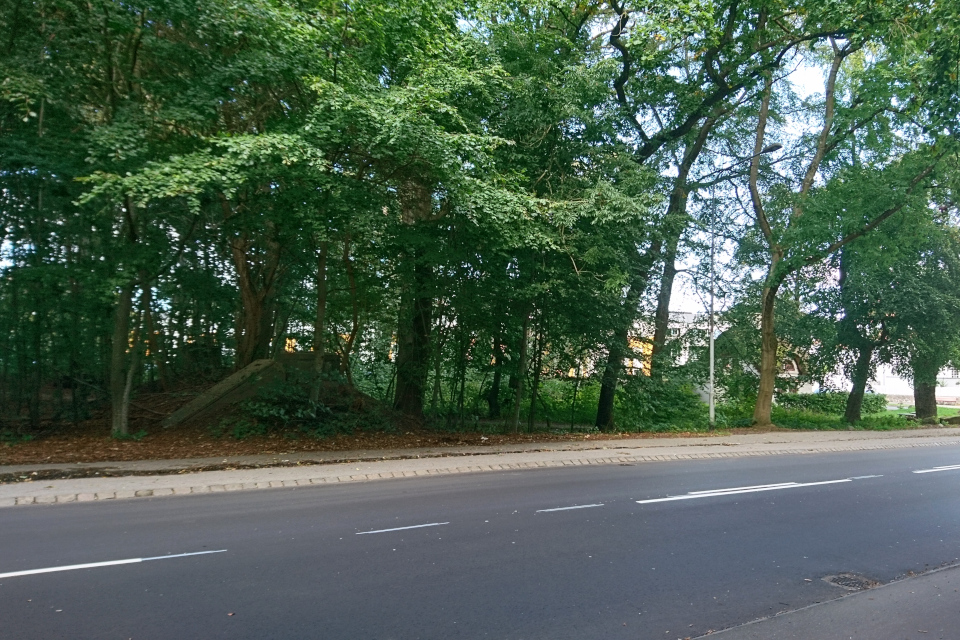 Слева около дороги Kongevejen - бомбоубежище в лесу около дороги