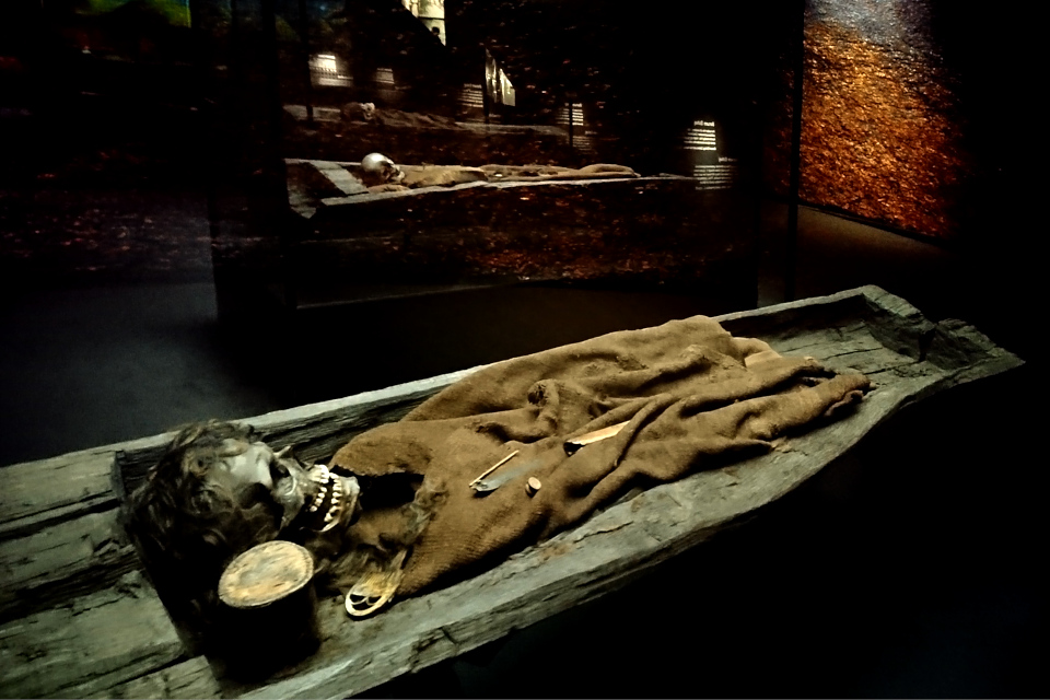 Останки молодого человека из кургана Борум Эсхой