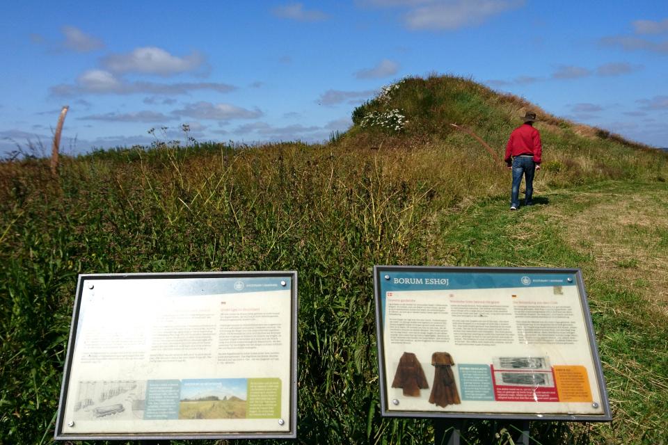Информационные щиты возле остатков кугана Борум Эсхой / Borum Eshøj