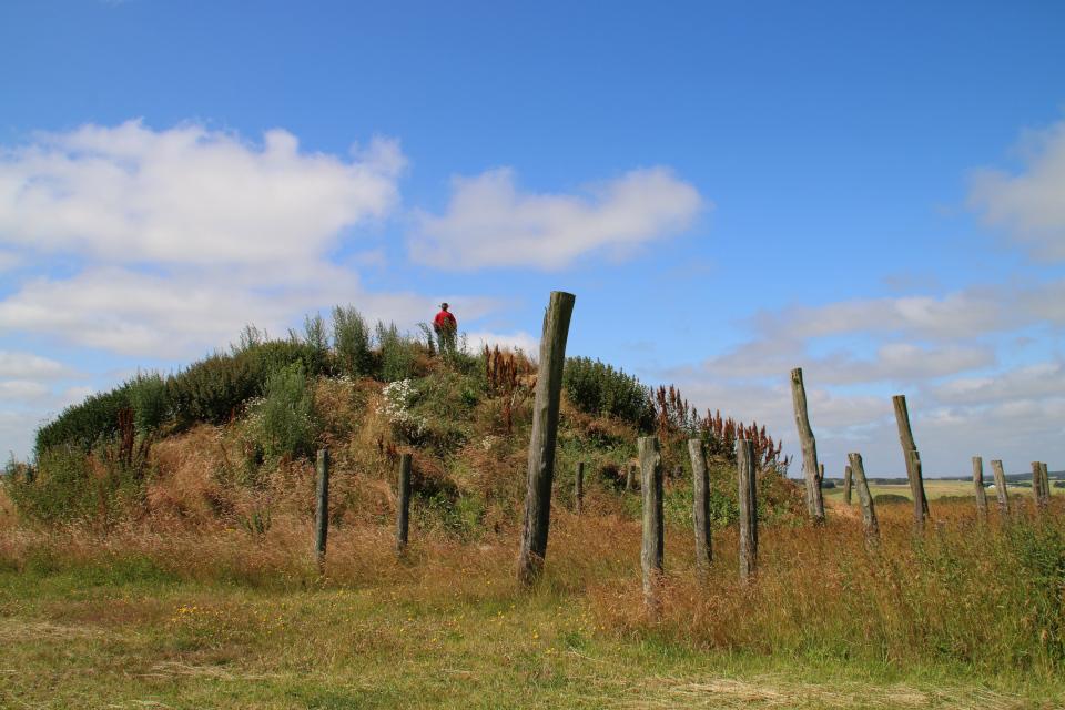 Вид на курган со стороны места, где во времена бронзового века находился дом