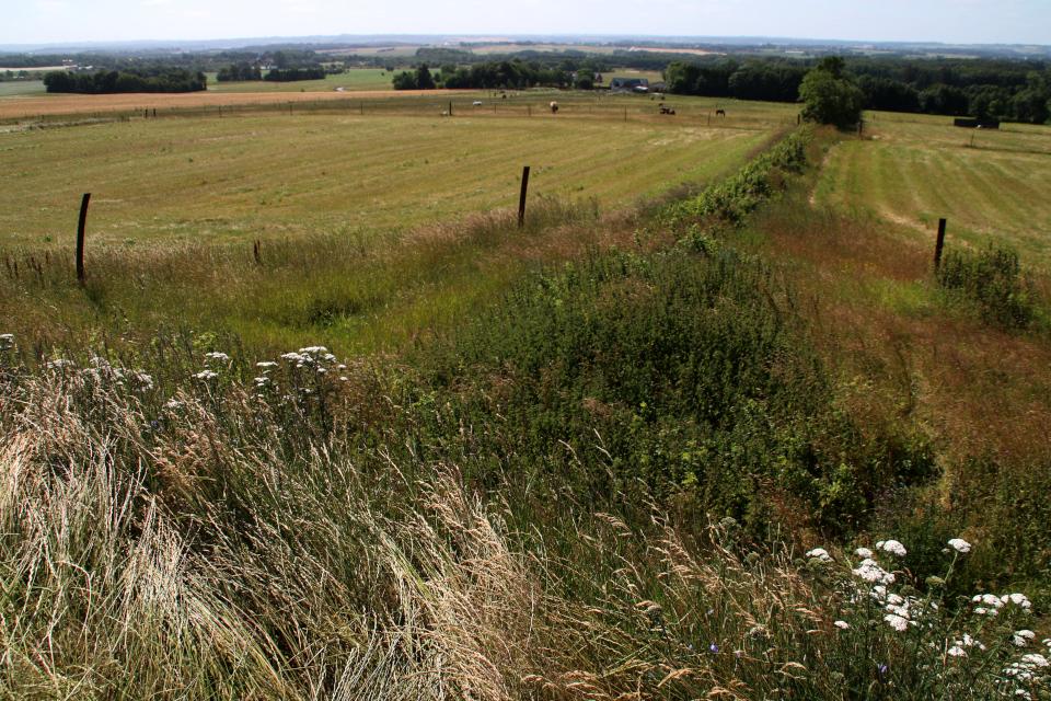 место бывшего основания кургана Борум Эсхой / Borum Eshøj