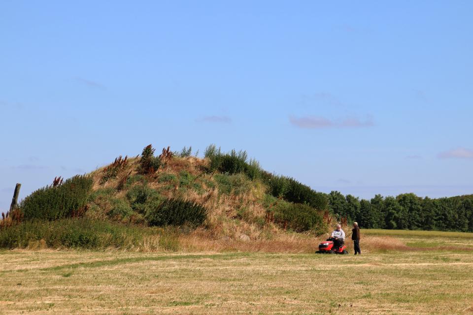 Доброволец скашивает траву возле курганов, Flemming Thisted