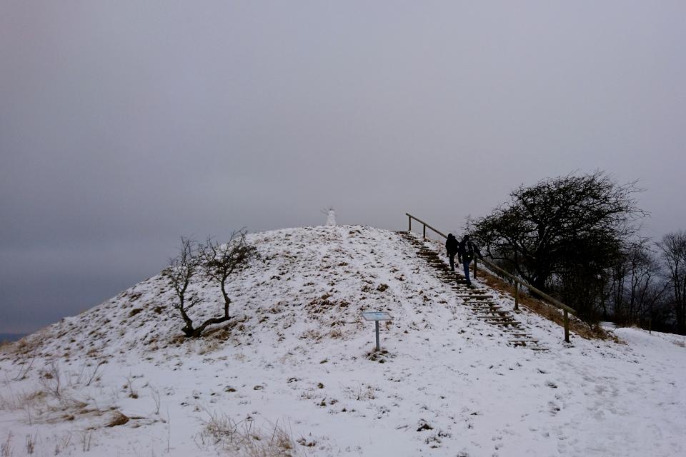 Курган Ельсхой / Jelshøj, покрытый снегом 10 мар 2018, Дания