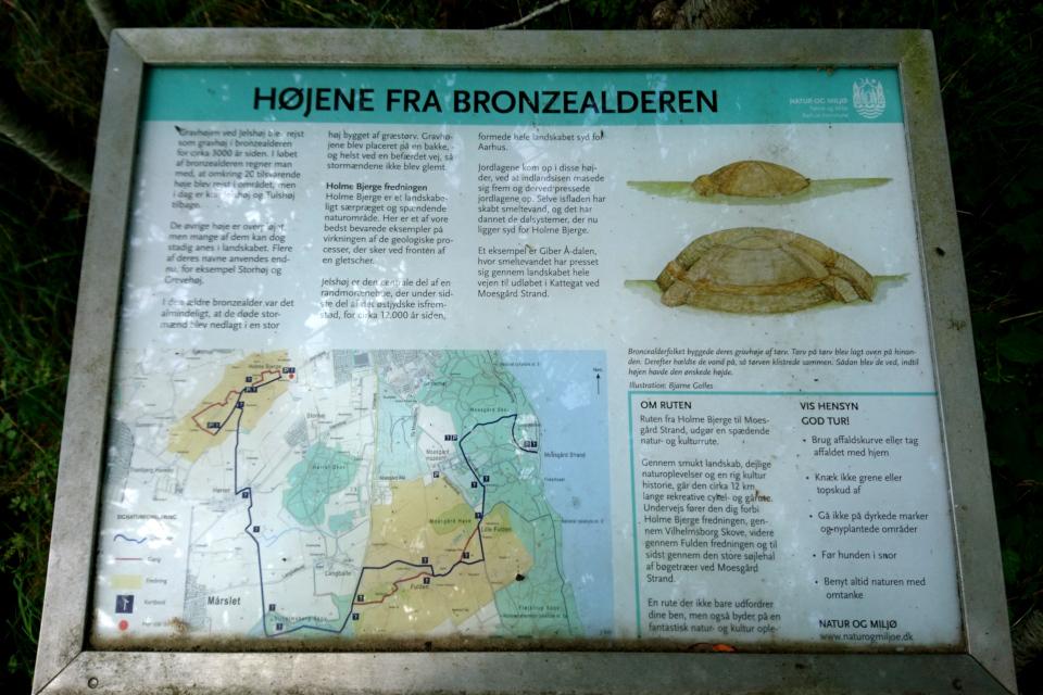 Højene fra Bronzealderen - курганы бронзового века