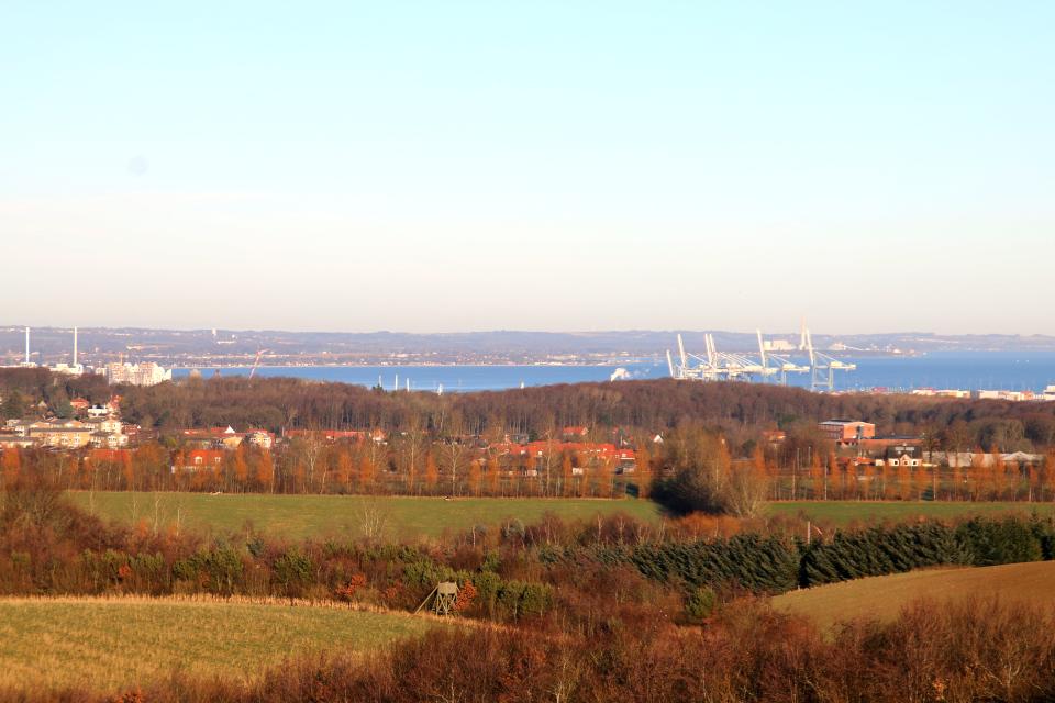 Вид с кургана с зумом на порт Орхуса, лес Рисков и район Тройберг
