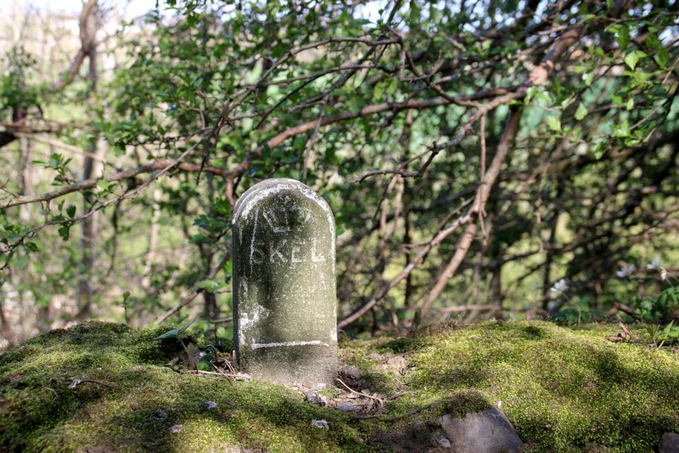 Пограничный каменный столбик, маркировочный камень (skelsten)