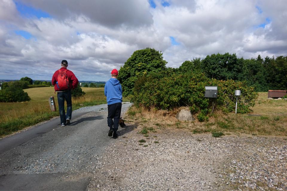 По пути к кургану Тульсхой, Дания