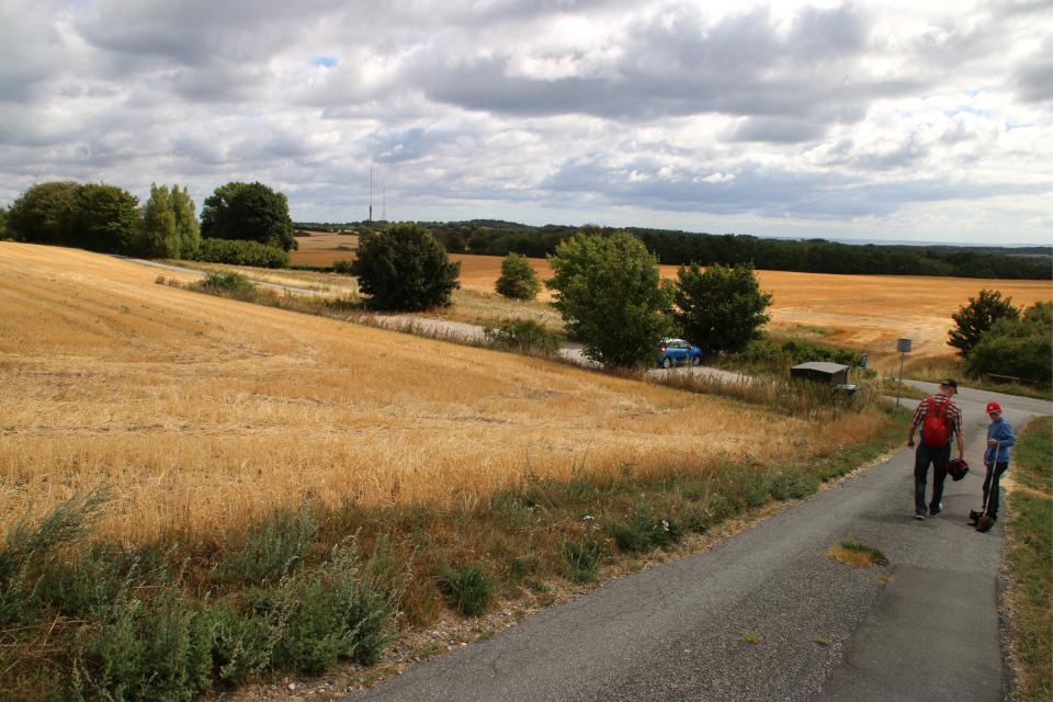Дорога к кургану Тульсхой (Tulshøj) со стороны парковки