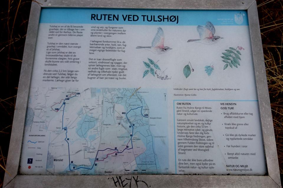 Информационный щит с маршрутом, Транбьерг (Tranbjerg), Дания