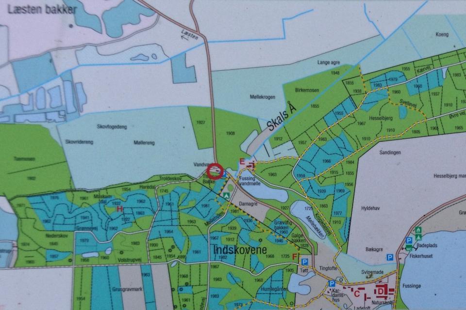 Карта с маршрутами и лесными насаждениями - плантациями
