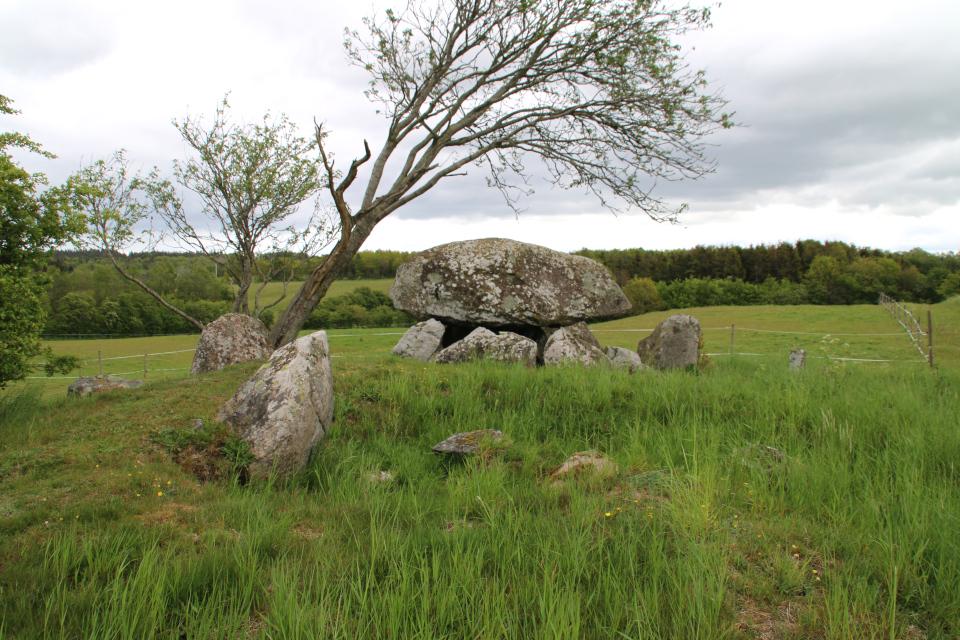 Огромный камень, оставшийся от соседней погребальной камеры дольмена-50 кр.
