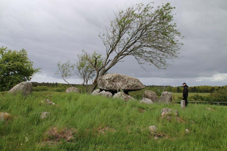 Погребальная камера дольмена с юго-восточной стороны и остатки кромлеха