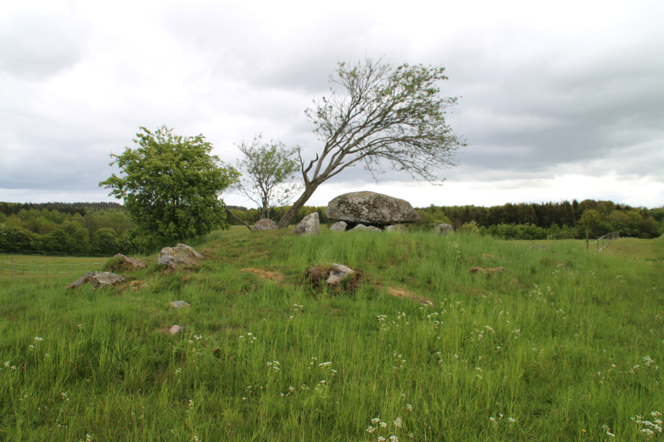 Вид с юго-восточной стороны на курган с дольменами