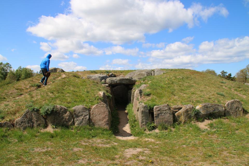 Коридорная гробница среди мегалитов Туструп, Дания
